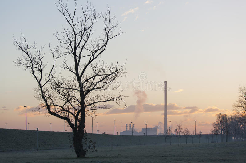 Consequences of pollution royalty free stock images