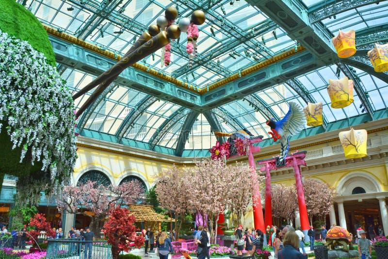 Conservatório de Bellagio e jardim botânico, exposição da mola foto de stock royalty free