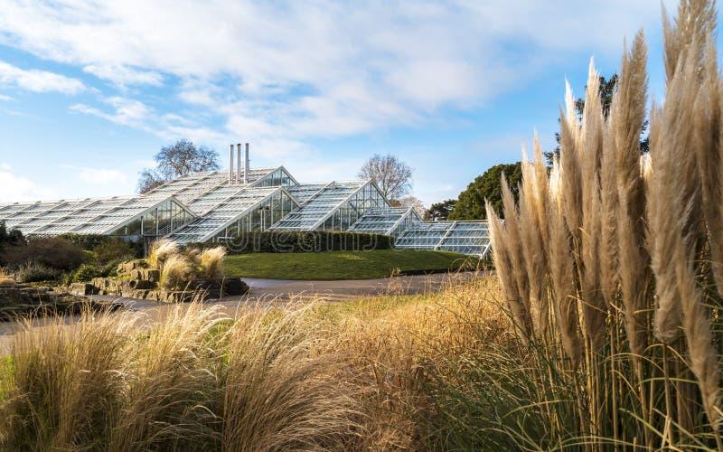 Conservatoire de princesse de Galles aux jardins de Kew en hiver/automne images libres de droits