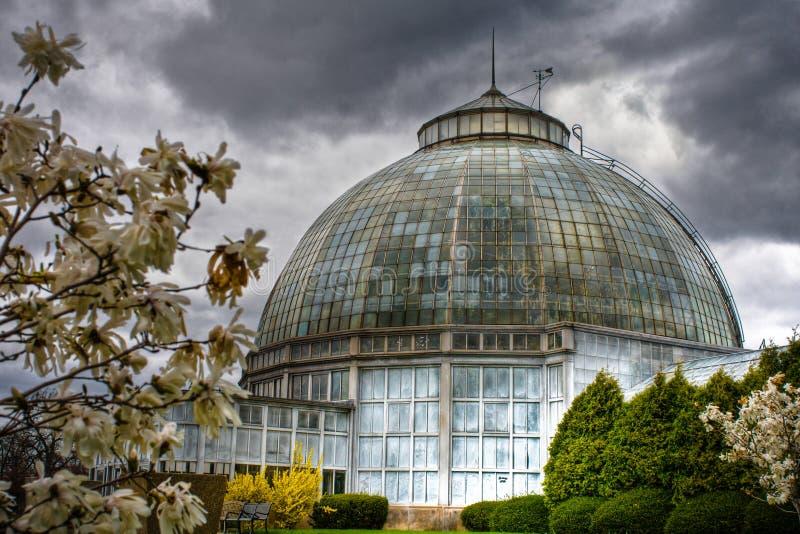Conservatorio dell'isola della reginetta a Detroit, Michigan fotografia stock libera da diritti