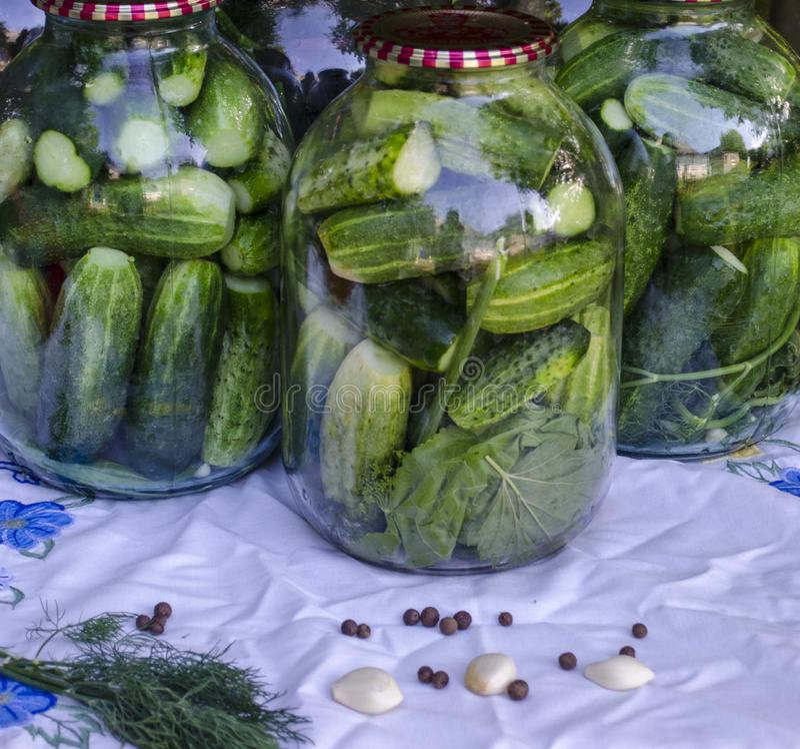 Conservazione dei cetrioli per l'inverno immagine stock libera da diritti