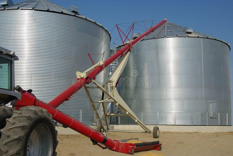 Conservazione del grano immagine stock libera da diritti