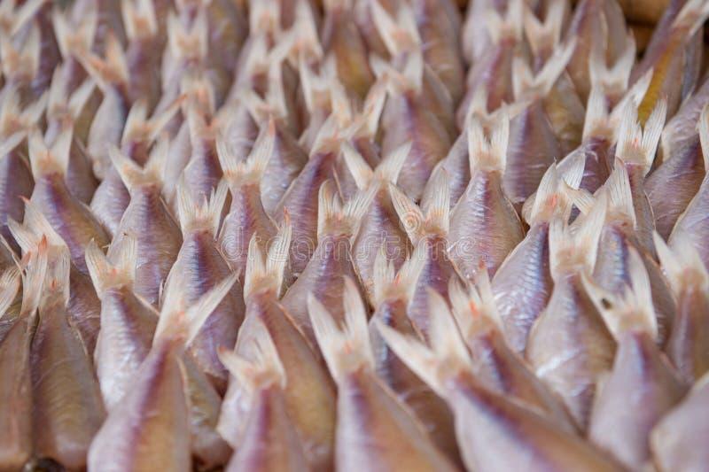 Conservazione del pesce essiccato nel mercato dell'alimento fotografia stock