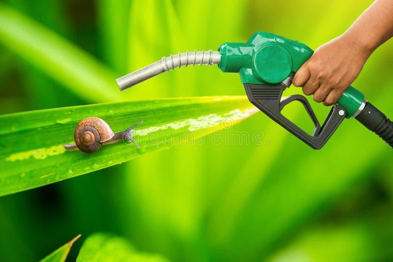 Conservazione verde Ugello della pompa di gas e fondo della foglia Erogatore del combustibile sul fondo della natura immagini stock