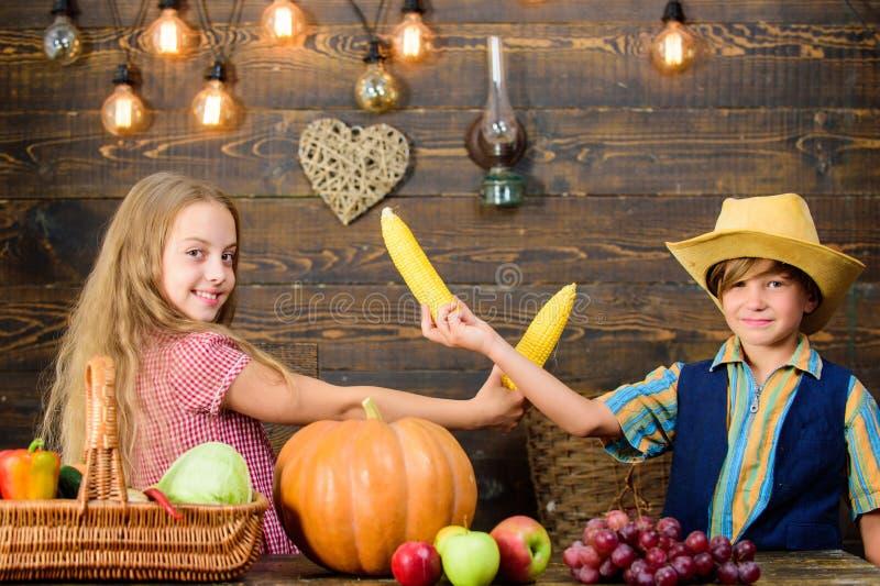 Considerado responsable de tareas diarias de la granja Las verduras del muchacho de la muchacha de los granjeros de los niños cos fotos de archivo libres de regalías