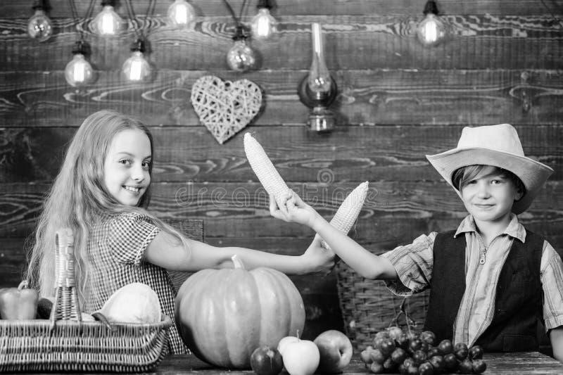 Considerado responsable de tareas diarias de la granja Las verduras del muchacho de la muchacha de los granjeros de los ni?os cos fotos de archivo libres de regalías