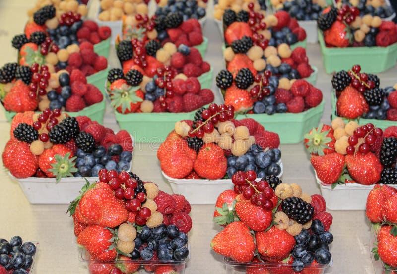 Consistir da mistura do fruto: corinto vermelho, framboesa vermelha, raspb branco fotografia de stock royalty free