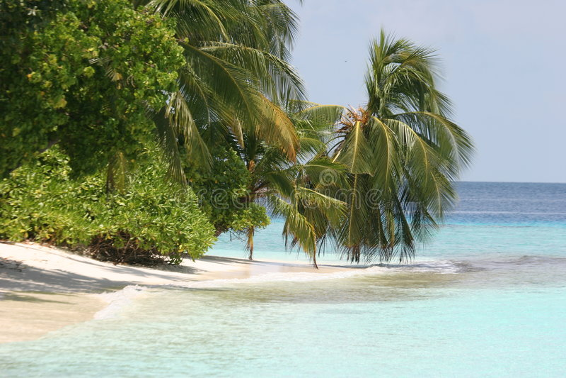 Console de Maldives fotografia de stock royalty free