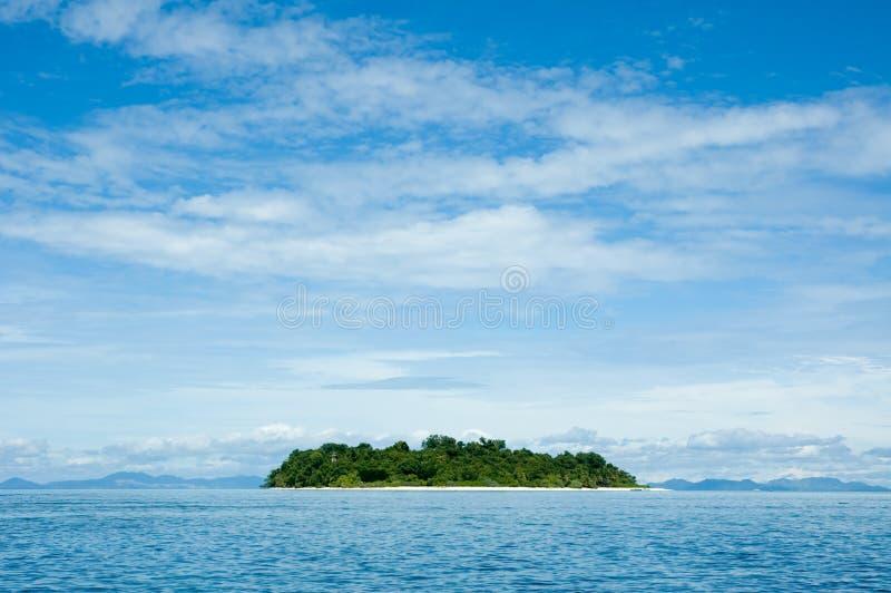 Console tropical fotografia de stock