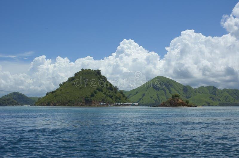 Download Consoles verdes foto de stock. Imagem de oceano, indonésia - 528384