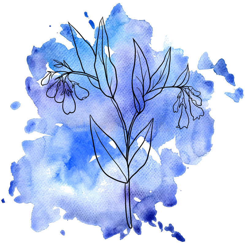 Consoude au fond d'aquarelle illustration stock