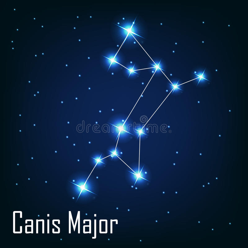 A constelação Canis Major protagoniza na noite ilustração royalty free