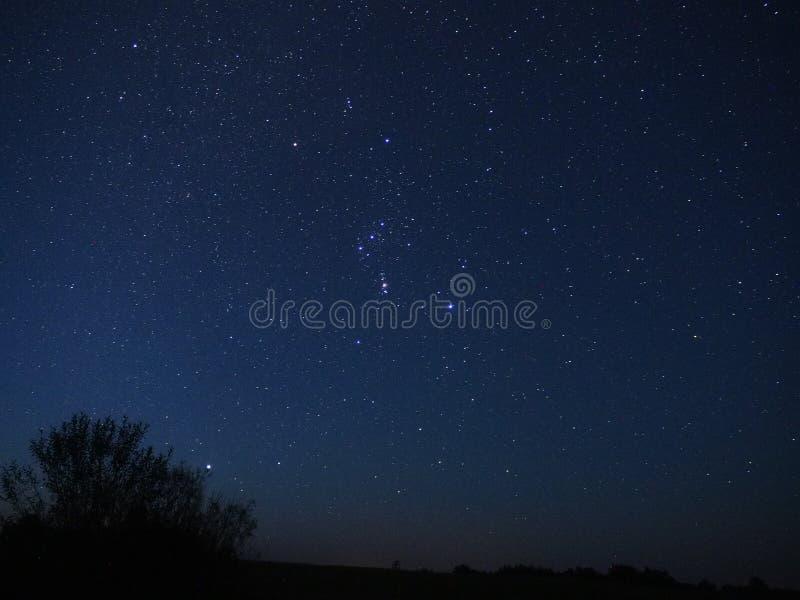 Constelação de Orion e de estrela de Sirius observação imagens de stock