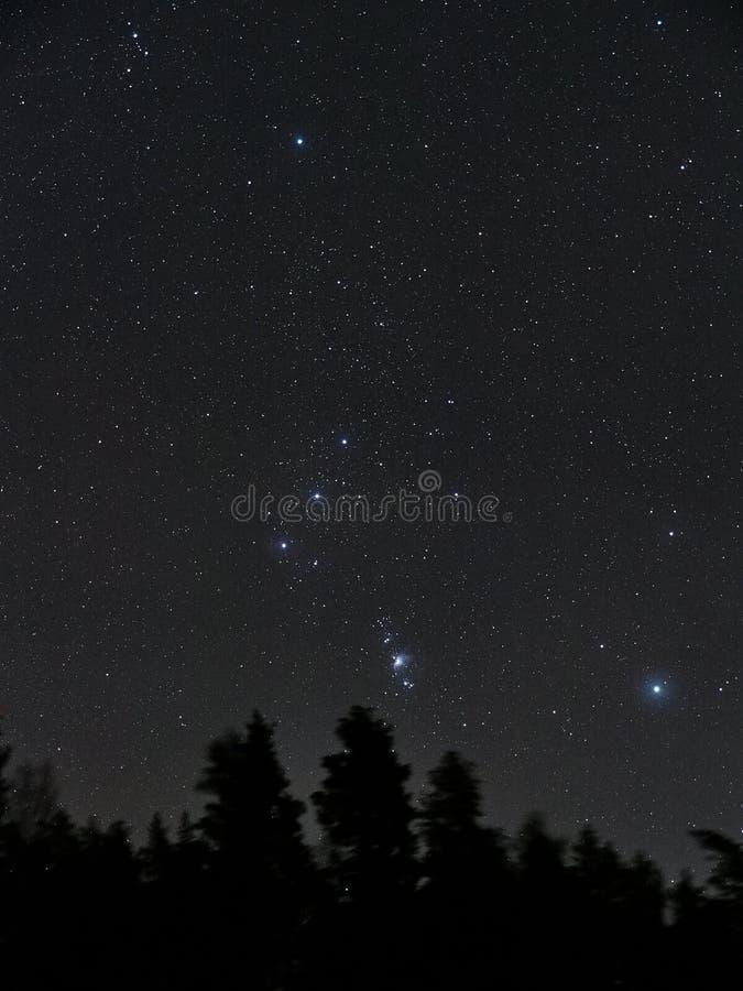 A constelação de Orion protagoniza no céu noturno foto de stock royalty free