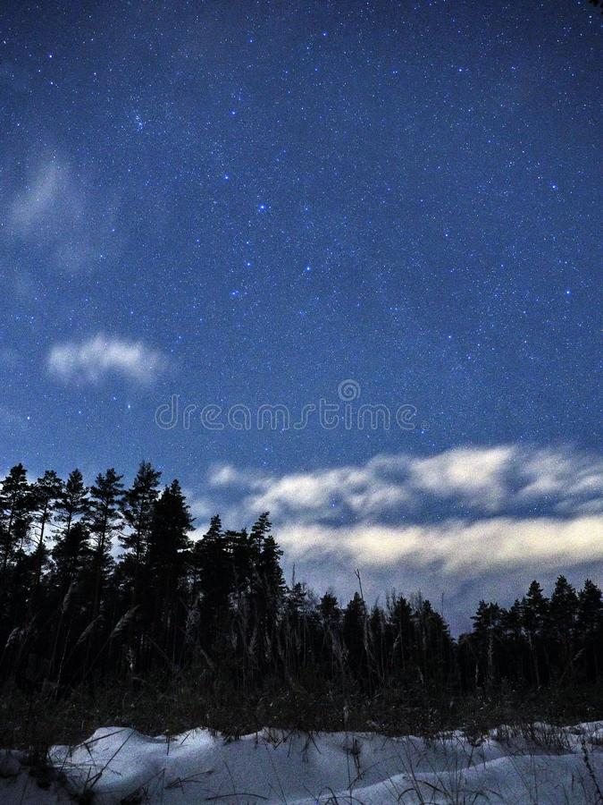 Constelações de Perseus das estrelas do céu noturno sobre a floresta do inverno fotos de stock royalty free