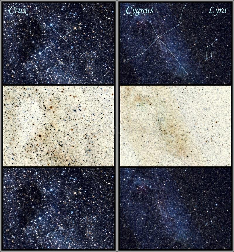 Constelações do ponto crucial, do Cygnuss (a cisne) e do Lyra ilustração do vetor