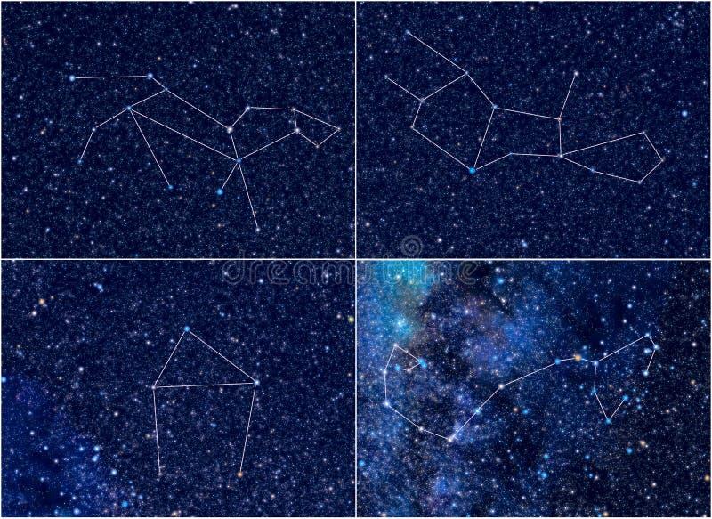 Constelações Leo Virgo Libra Scorpio do zodíaco ilustração do vetor