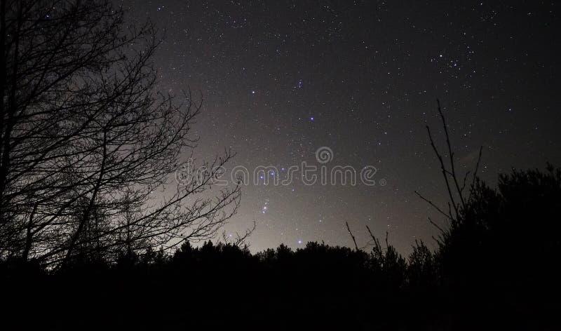 Constelaciones de Orión de las estrellas del cielo nocturno observando imagenes de archivo