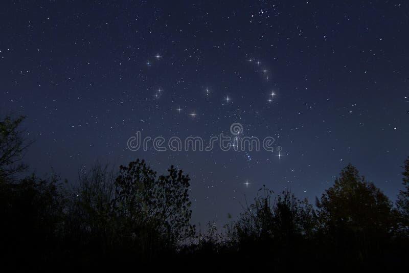 Constellation d'Orion en vrai ciel nocturne, le chasseur photographie stock libre de droits