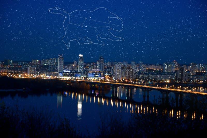 Constellation de commandant d'Ursa images libres de droits