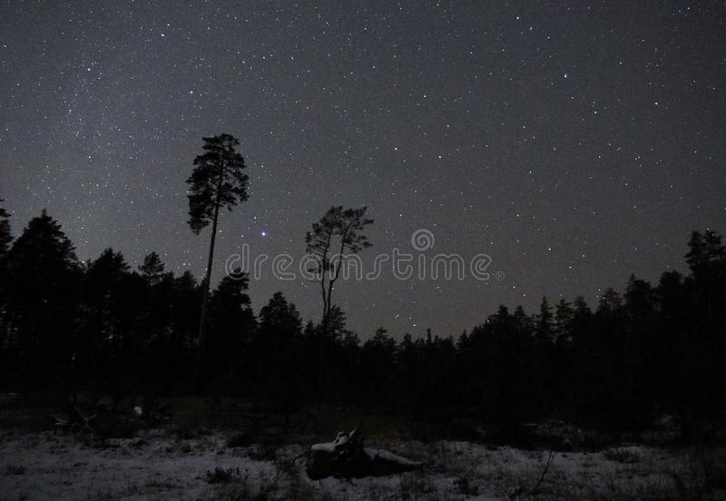 Constellation et neige de Lyra d'étoiles de ciel nocturne photo libre de droits