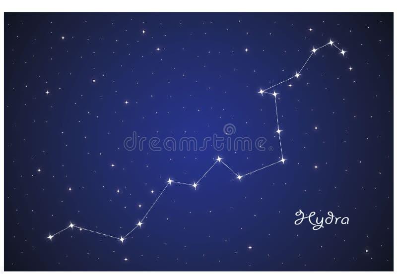 Constellation of Hydra vector illustration