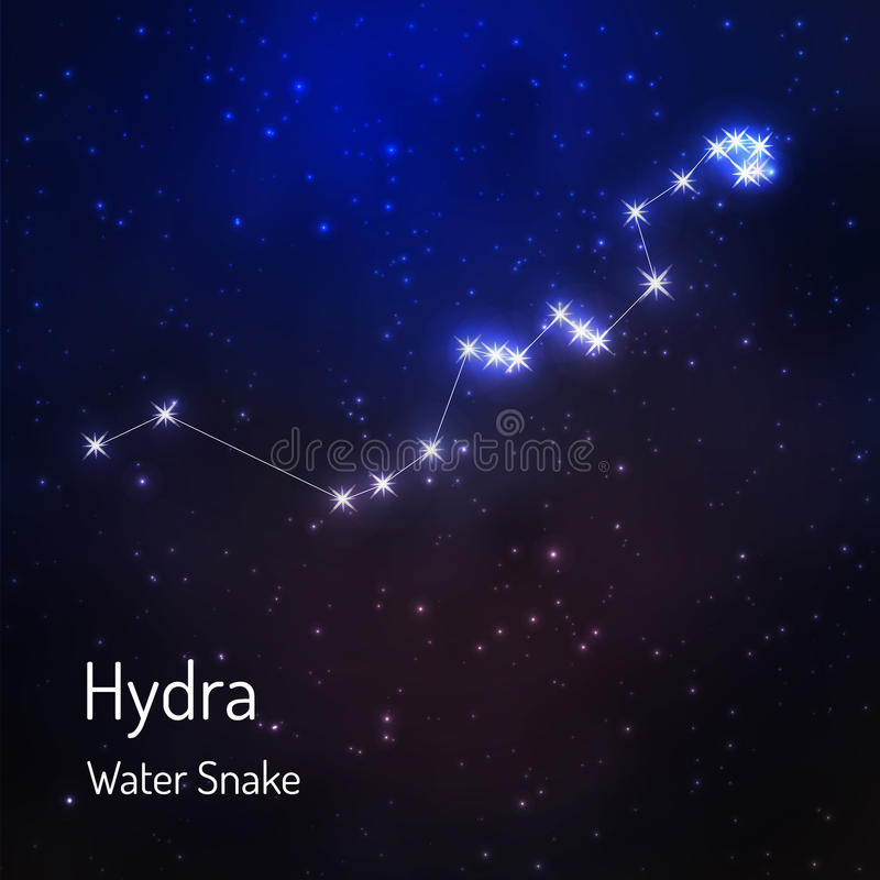 Constellation in the night starry sky vector illustration