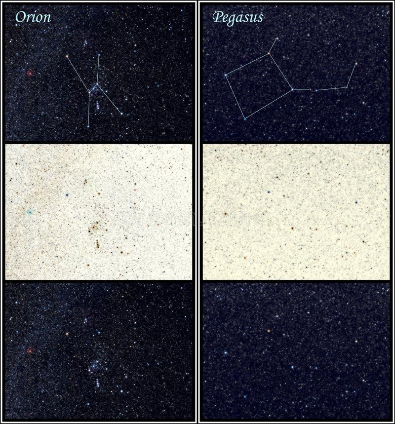 Constellation Orion Pegasus royalty free stock photo