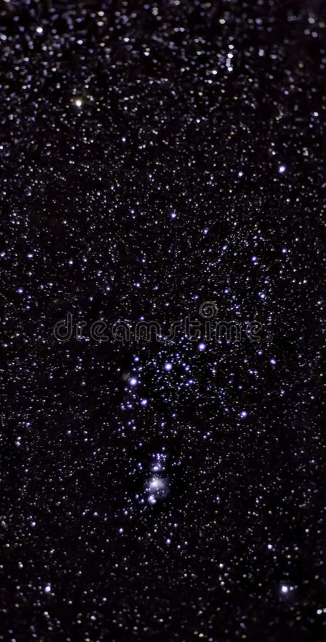 Constellation of Orion stock image