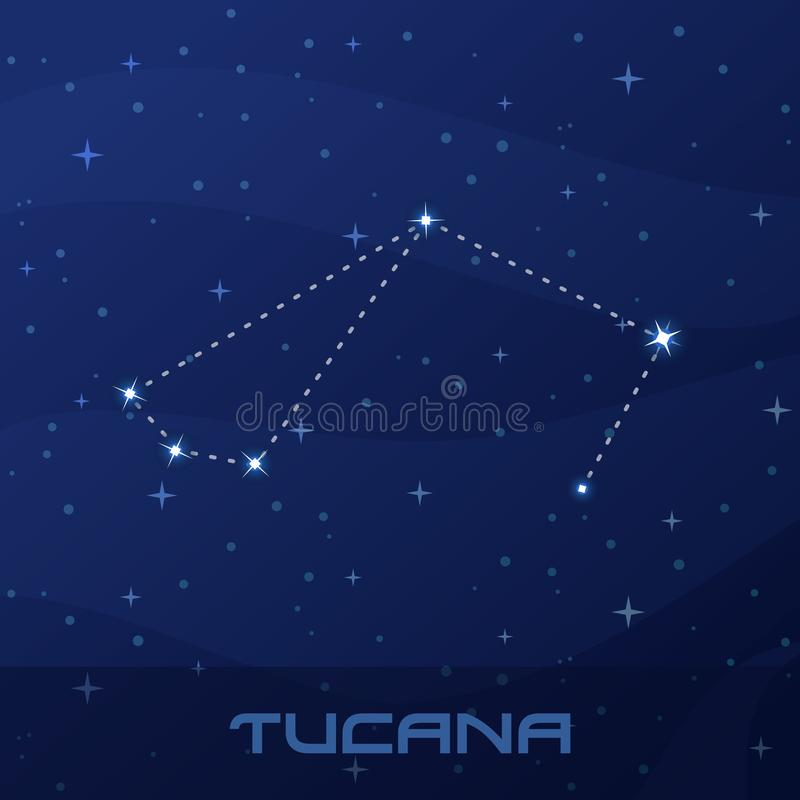 Constellation Tucana, Toucan, night star sky royalty free illustration