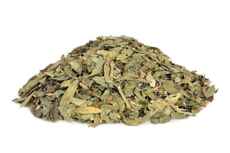 Constipation and Laxative Herb Mixture. Used in alternative herbal medicine with senna leaf, fennel, elder and lime flowers on white background royalty free stock image