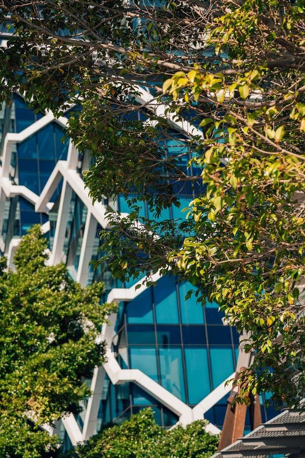 Construção coberta com as plantas em Sydney fotografia de stock