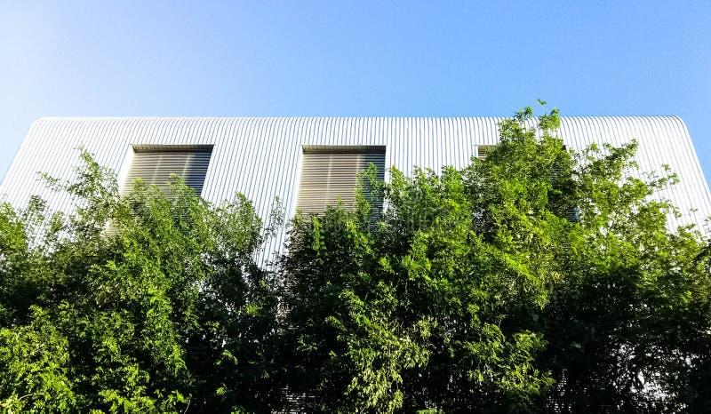 Construção com as árvores verdes grandes imagem de stock royalty free