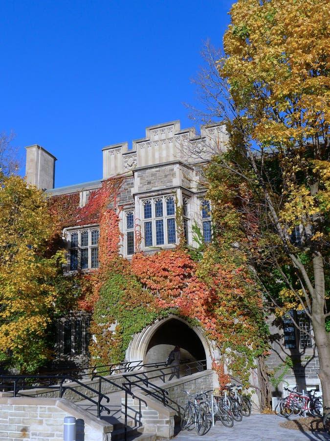Construção da faculdade com a hera na queda imagens de stock royalty free