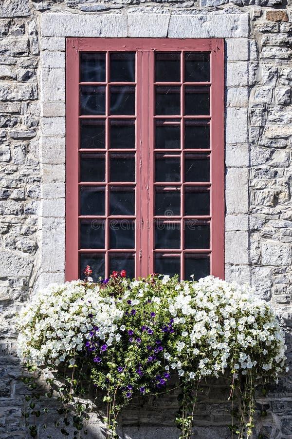 Construção de tijolo com guarnição vermelha em torno da janela com as flores roxas e brancas na parte dianteira imagem de stock royalty free