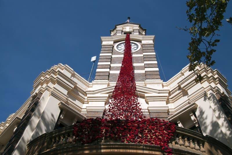 Construção do Conselho do condado com a cascata papoilas feitas crochê/feitas malha para cerimonias comemorativas de Anzac fotografia de stock royalty free
