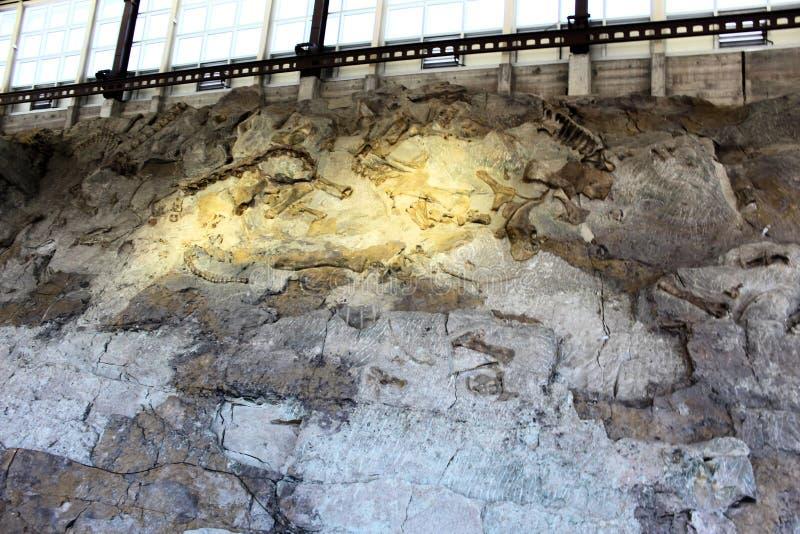 Construção do monumento nacional do dinossauro imagem de stock