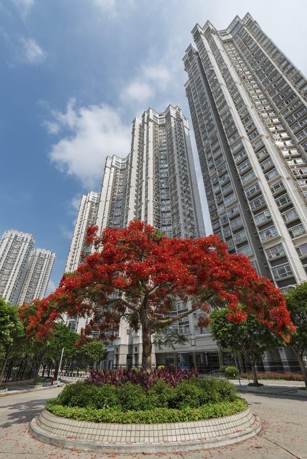 Construção residencial da elevação alta imagens de stock