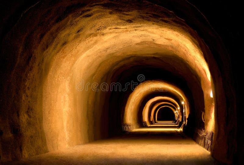 Construção visualmente dinâmica do túnel fotografia de stock