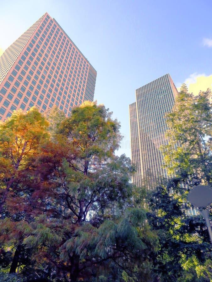 Construções altas das zonas das docas fotos de stock royalty free