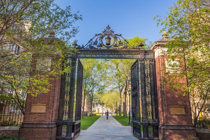 Construções da Universidade de Yale fotos de stock