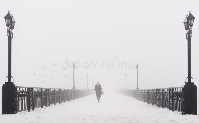 Construa uma ponte sobre a paisagem da cidade no dia de inverno nevado nevoento imagem de stock