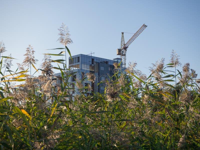 Construcción de edificios modernos El concepto de vivienda respetuosa del medio ambiente foto de archivo