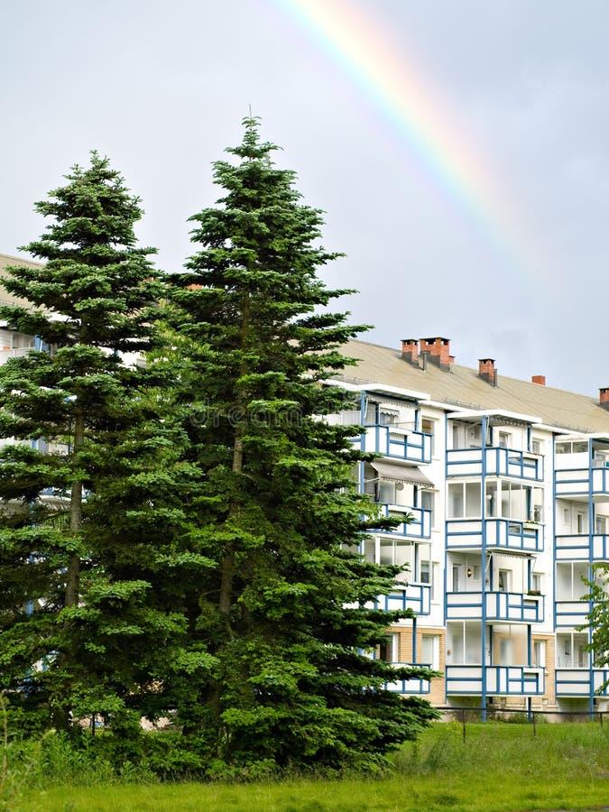 Construcción de viviendas, árboles spruce y arco iris imagen de archivo