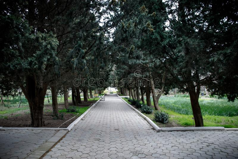 Construcción de viviendas abandonada del pueblo en el jardín de Baku Botanical Nadie en el parque con los árboles primavera fotografía de archivo