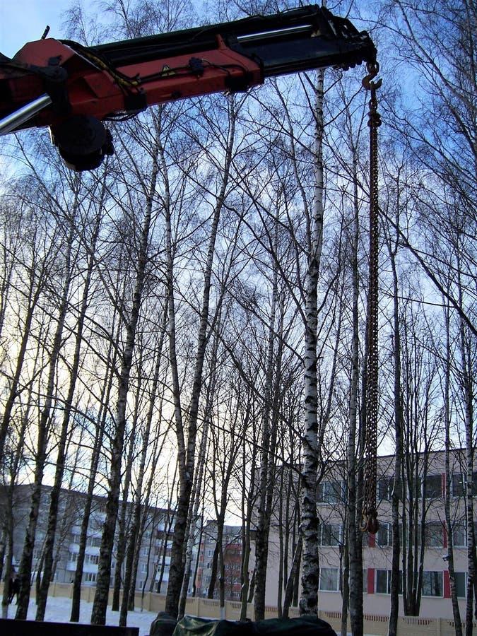 Construcciones, la grúa de carga-elevación del automóvil, flecha contra la perspectiva de árboles, invierno, la ciudad de la grúa fotos de archivo