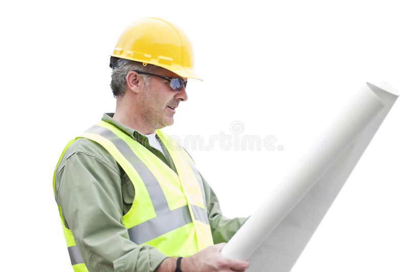 Construction Contractor isolated on White royalty free stock image