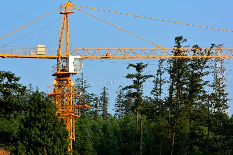 Construction Dans La Forêt Photo stock