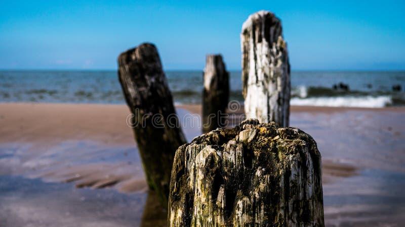 Construction de brise-lames sur une plage images libres de droits