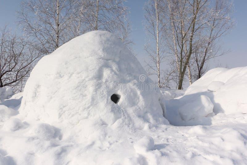Construction de neige un igloo sur une clairière d'hiver images stock